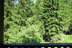 <b>vista da balcone verso bosco</b>